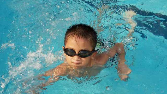 Young swimmer in the pool